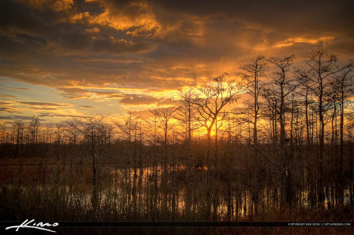 Sunset Wetlands Loxahatchee Slough Florida
