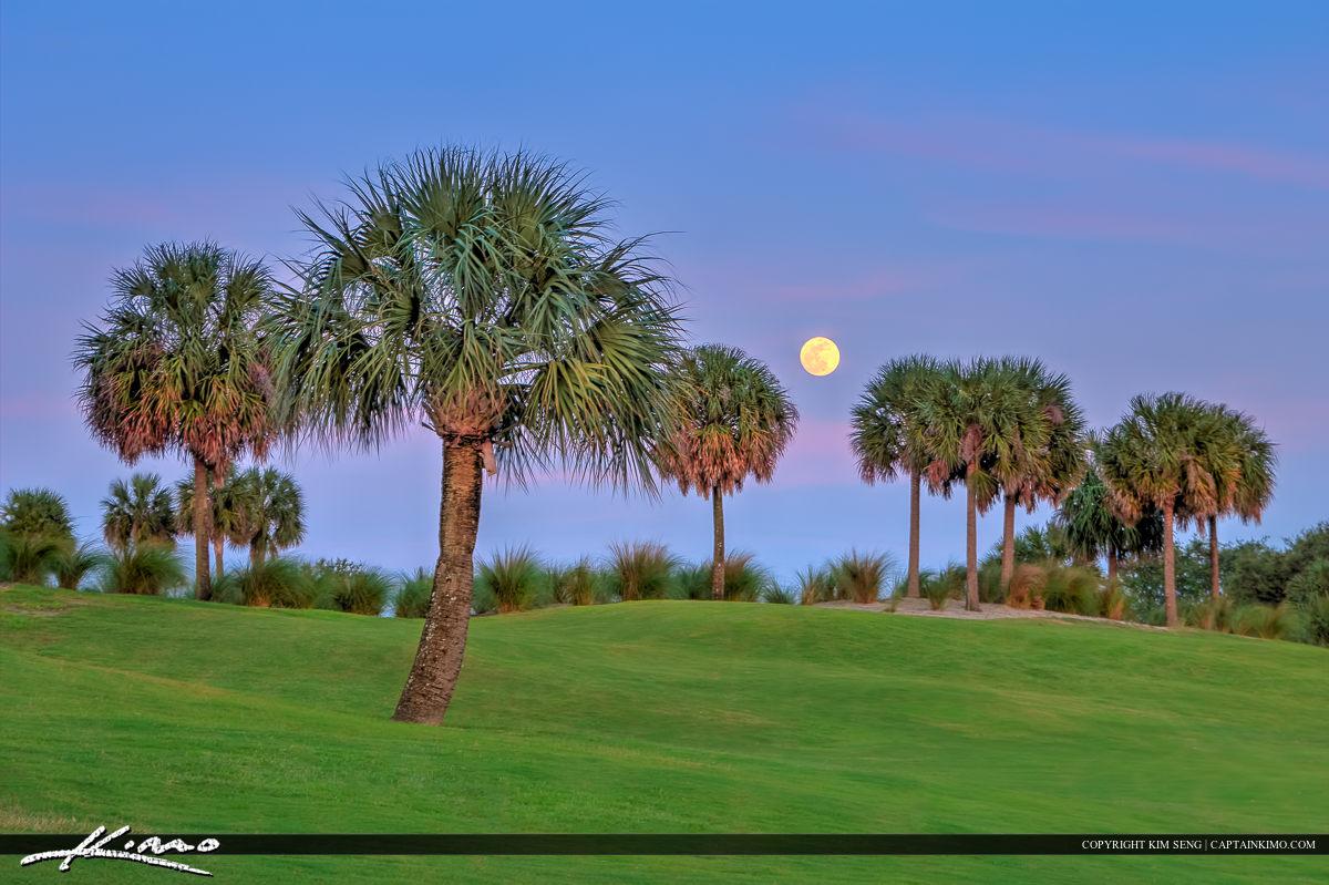 Golf Course Moon Rise in North Palm Beach
