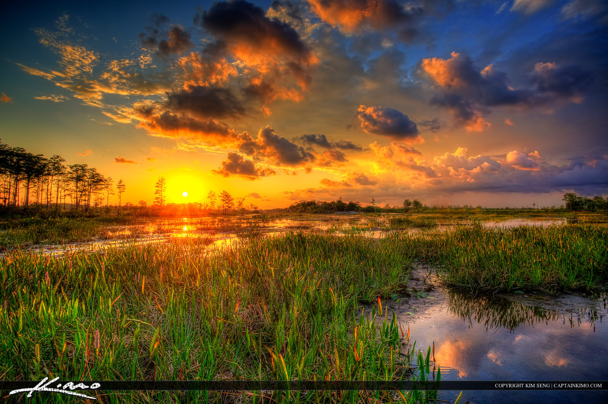 Sunset at Wetlands Slough Palm Beach County