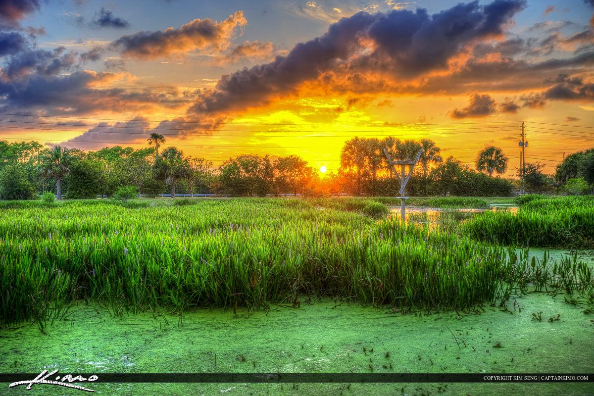 Wellington Sunset Over Wetlands at Village Park