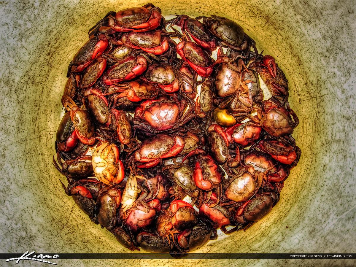 Crabs in a Bucket in Thailand