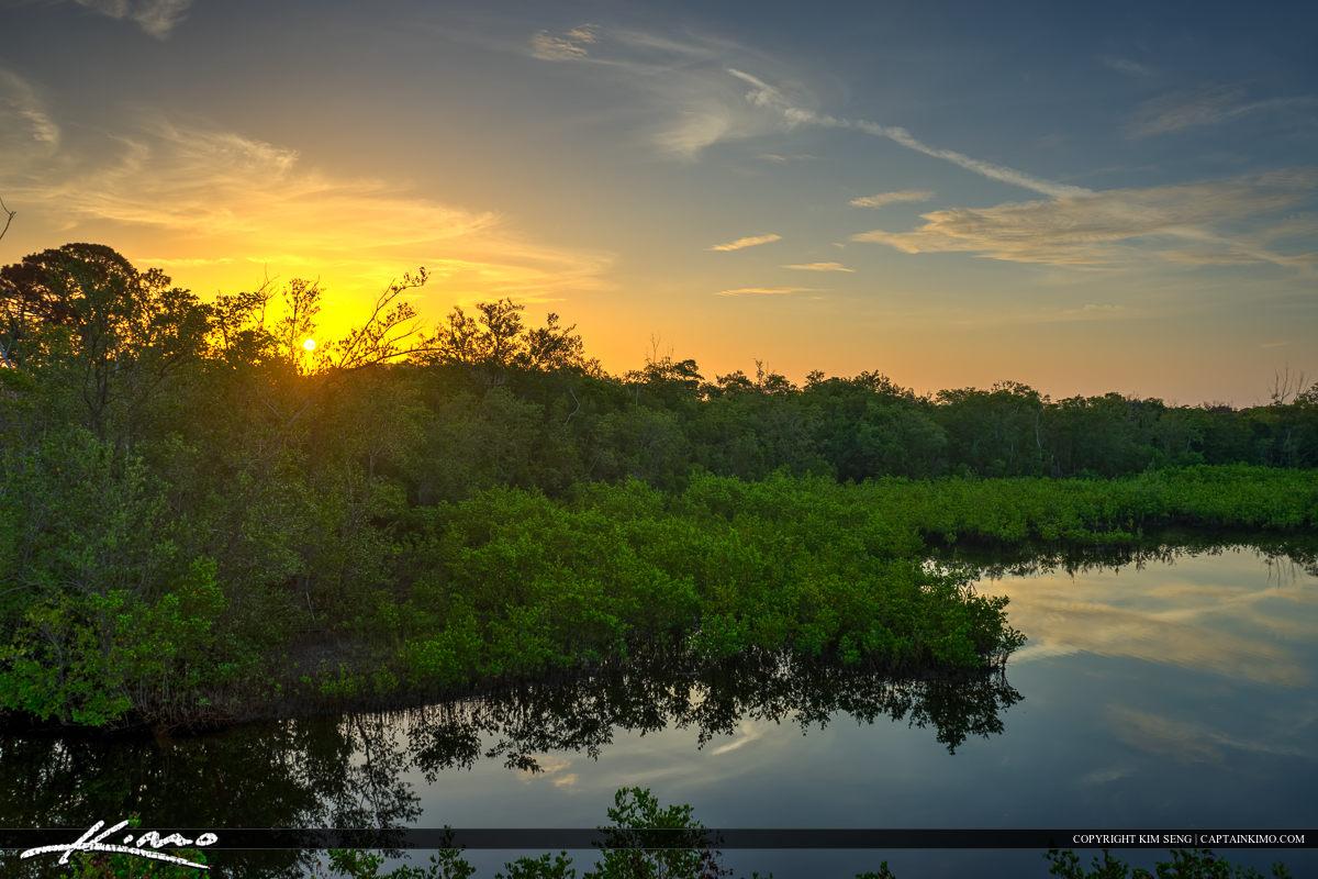Sunrise Over Mangrove Lagoon Juno Beach Dunes