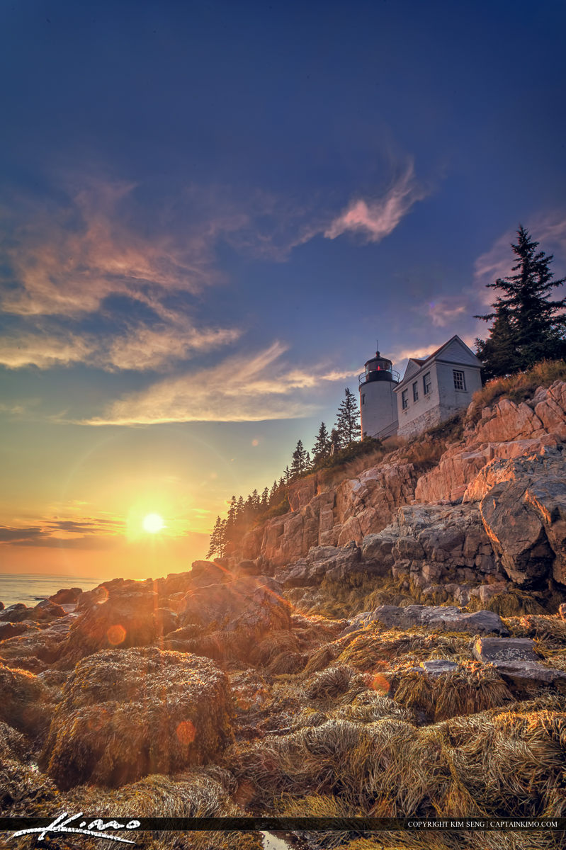Beautiful sunset at Acadia national Park with seaweed