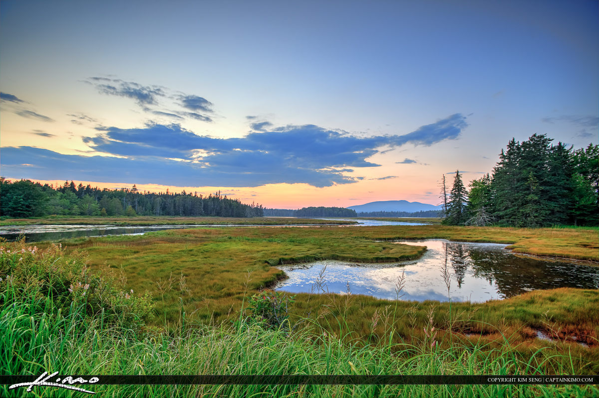 Beautiful landscape at Acadia national Park along the wetlands