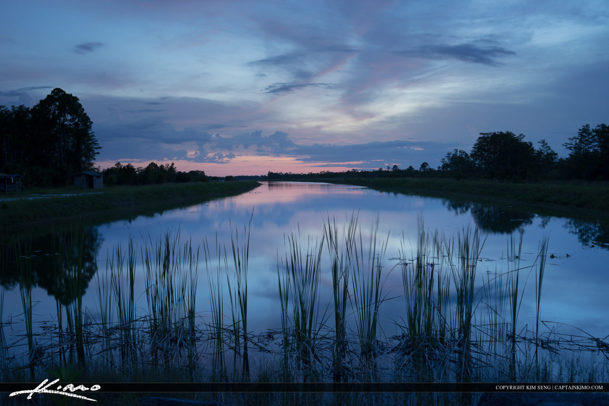Beautiful blue colors at Hungryland wildlife management area