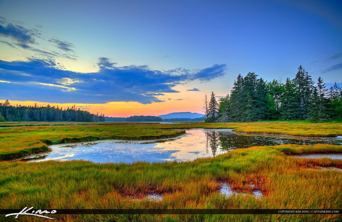Bass Harobor Marsh Acadia Maine