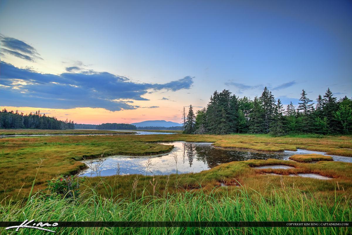 Acadia national Park wetlands beautiful landscape