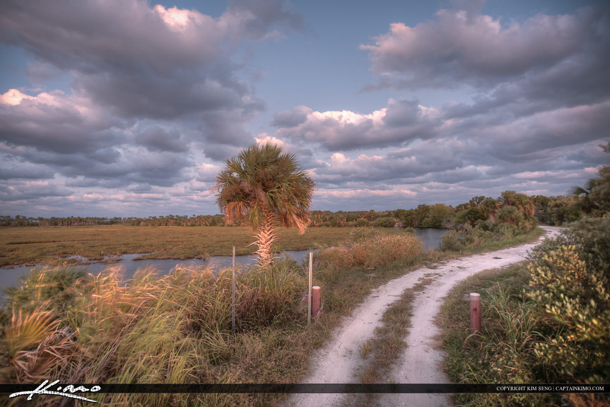 New Smyrna Beach Mosquito Lagoon Road to Park