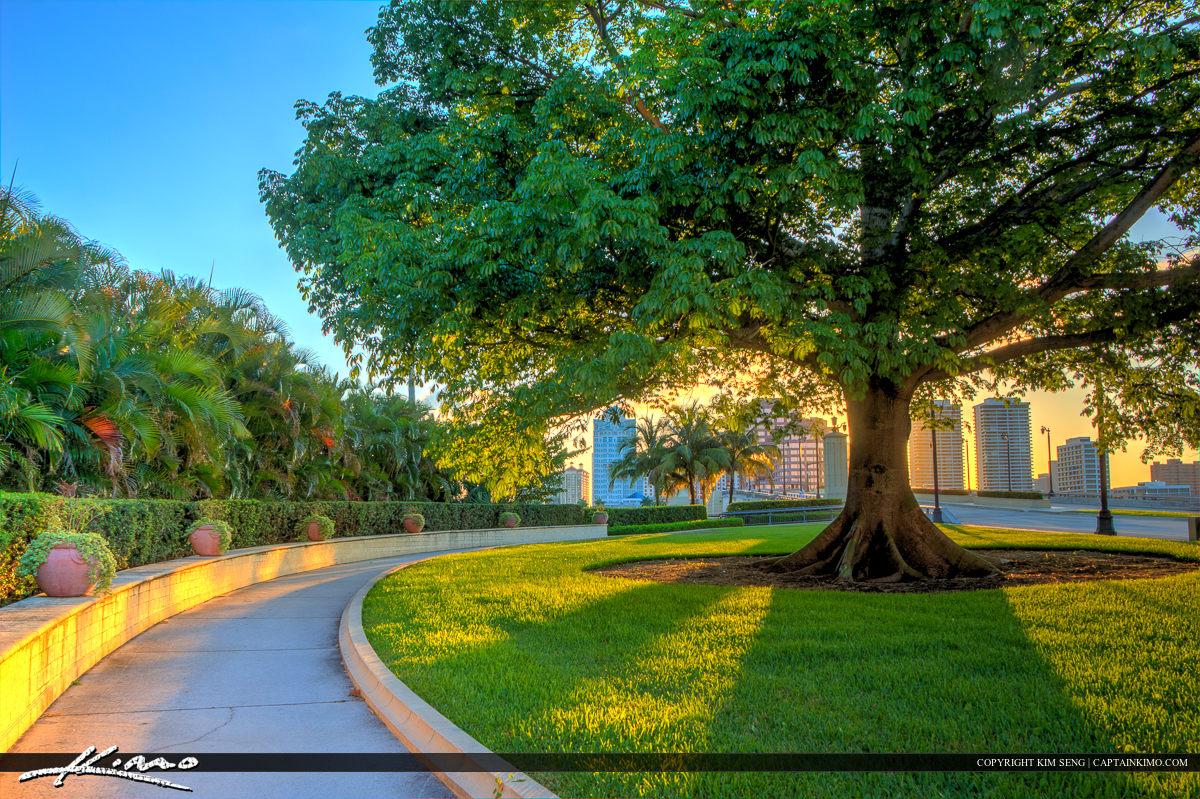 Kapok Tree Royal Park Bridge West Palm Beach