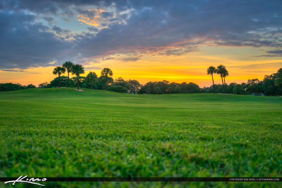 Green Grass Sunset at Golf Course