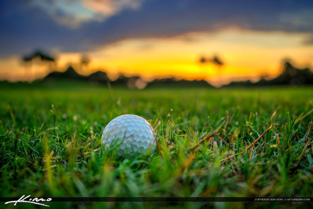 Golf Ball at Golf Course North Palm Beach Florida