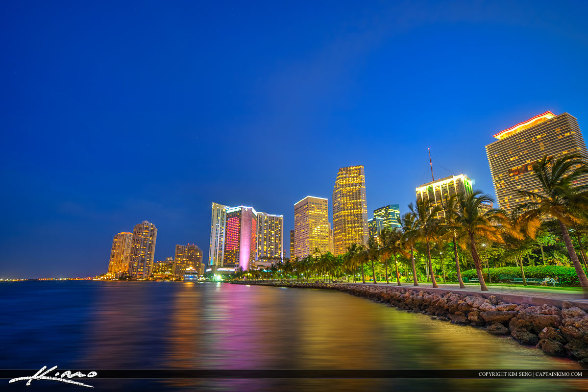 Miami City Downtown Nighttime at Bayshore Park