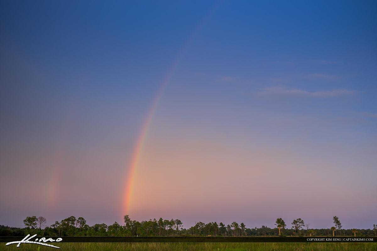Florida Landscape Rainbow Over Wetlands