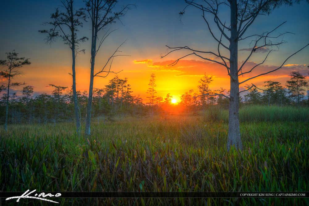 Palm Beach Gardens Florida Sunset
