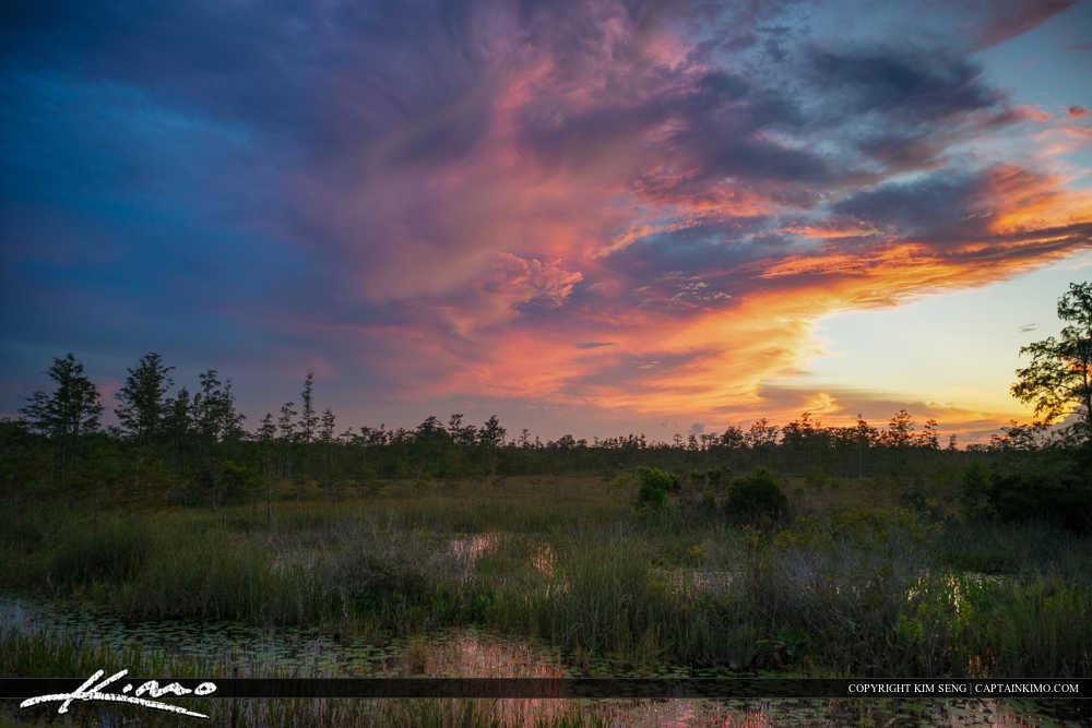 Wetlands Sunset Florida Landscape Clouds Over Preserve