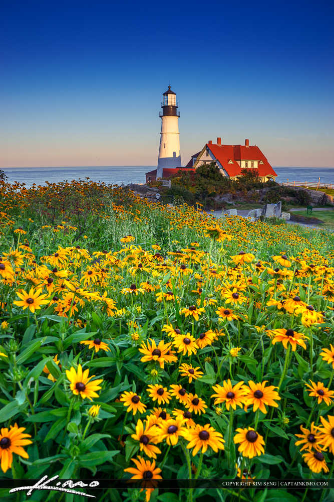 Portland Maine Lighthouse with Flower