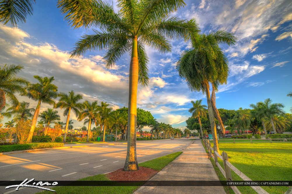 Royal Palm Beach Florida Along Royal Palm Beach Blvd