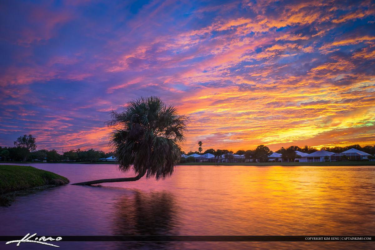Palm Beach Gardens Florida Lake Sunset