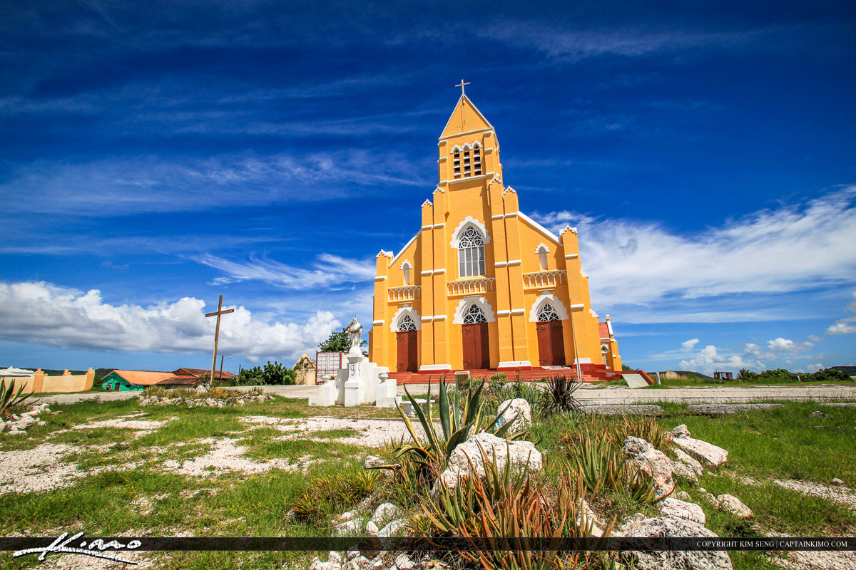 Curacao Travel Caribbean Islands Century Plant