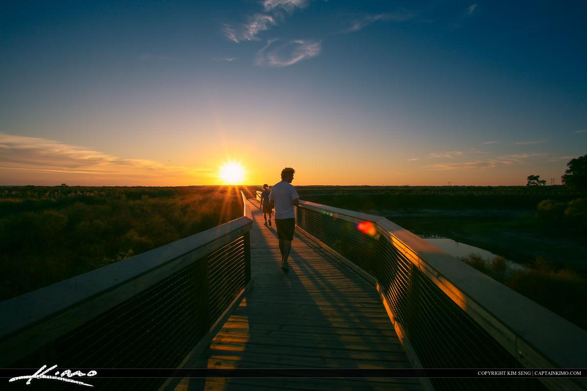 Paynes Prairie Gainesville Florida Boardwalk Sunset