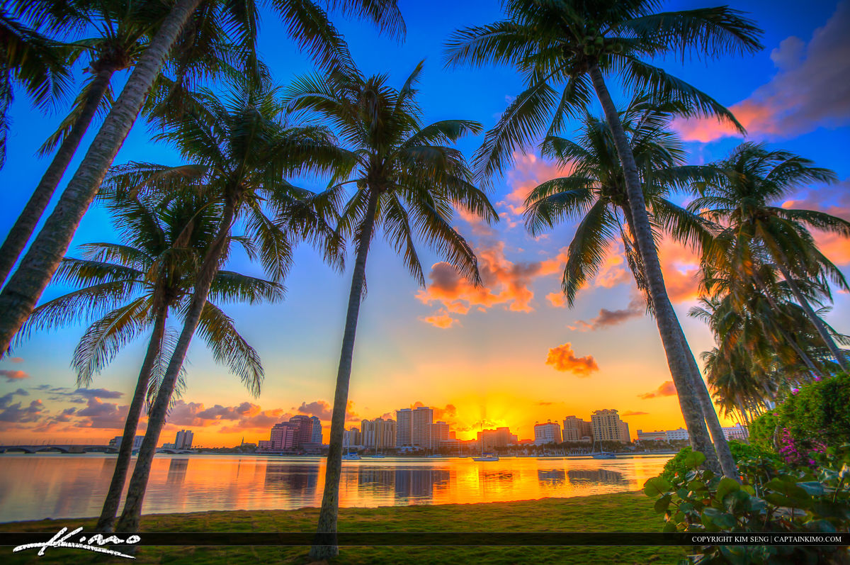 Coconut Tree Sunset West Palm Beach