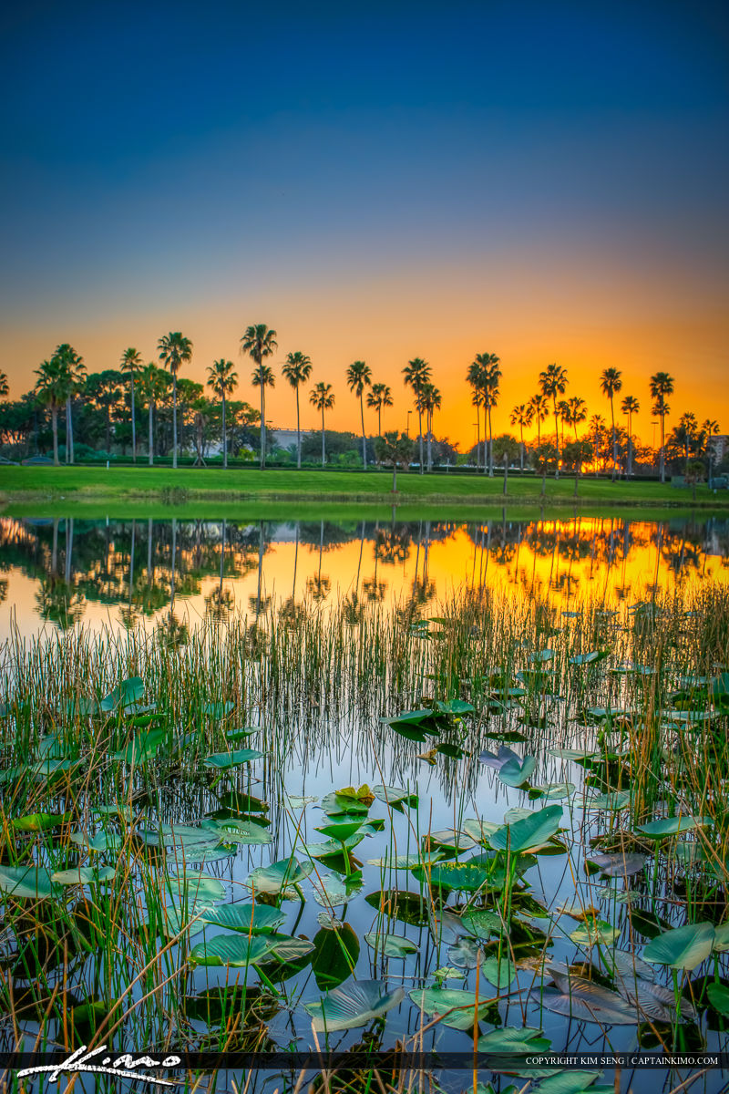 Palm Beach Gardens Mall Sunset at Lake
