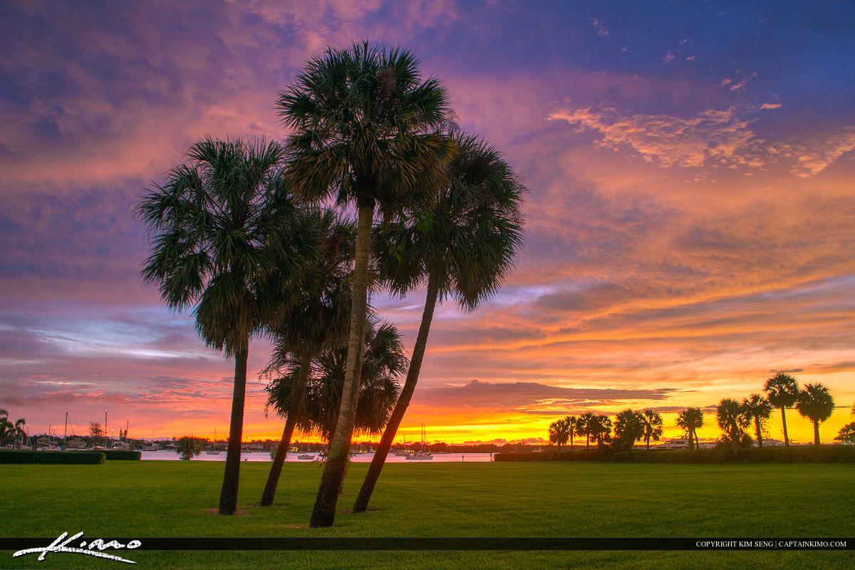 North Palm Beach Sunrise Palm Trees