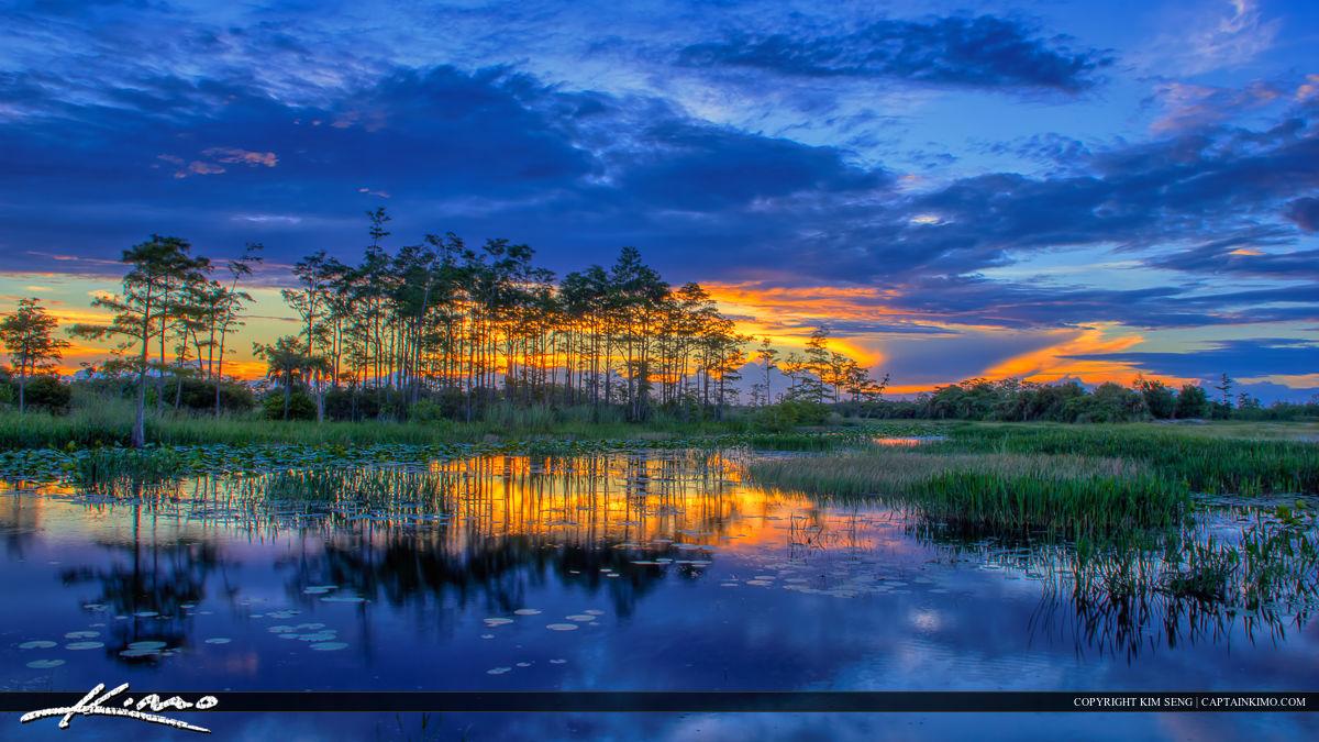 Florida Wetlands Sunset the Fishing Hole