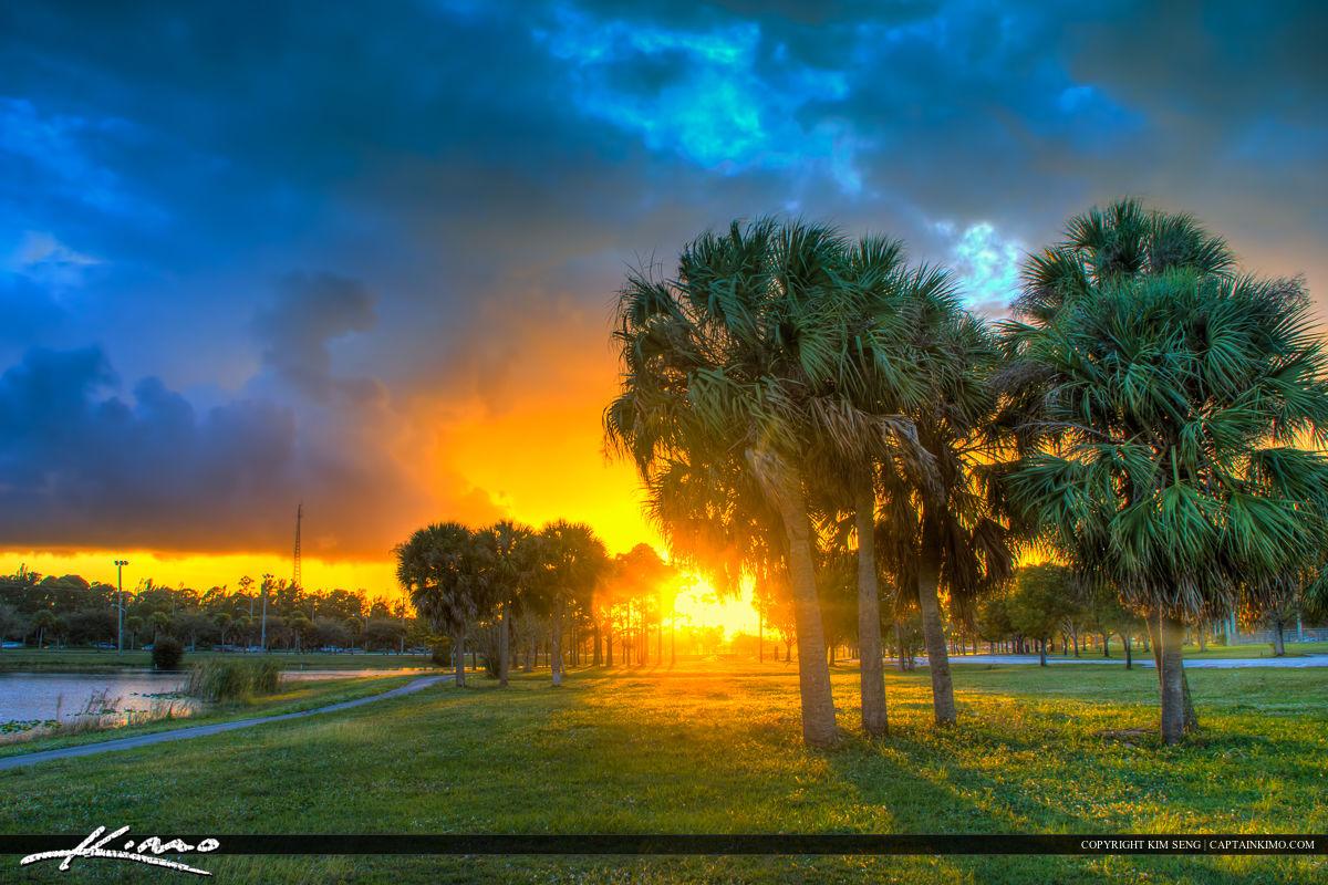 Okeeheelee Park Sunset at Lake Greenacres Florida Palm Tree