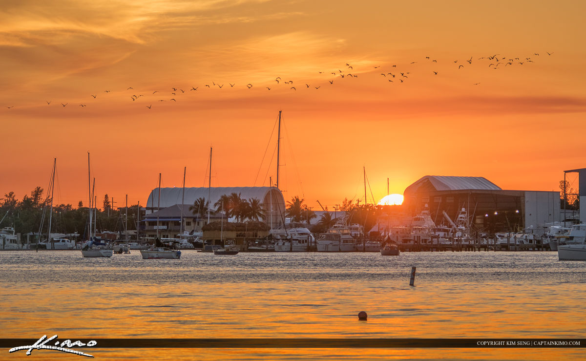 New Port Cove Marina Center Sunset Waterway