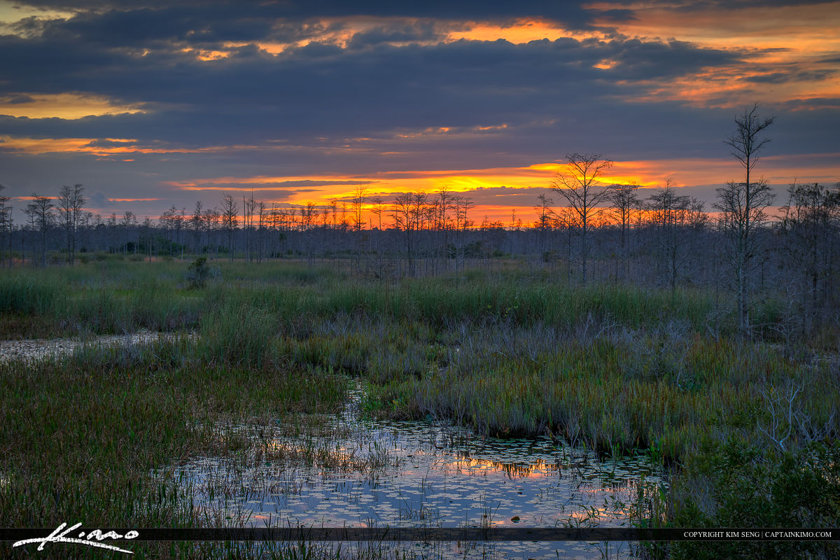 Florida Sunset Over Wetlands Marsh at the Slough