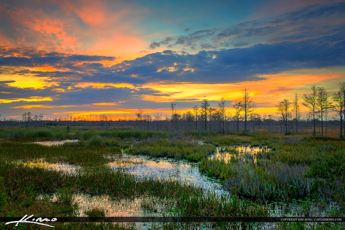 Florida Sunset Over Wetlands at the Loxahatchee Slough