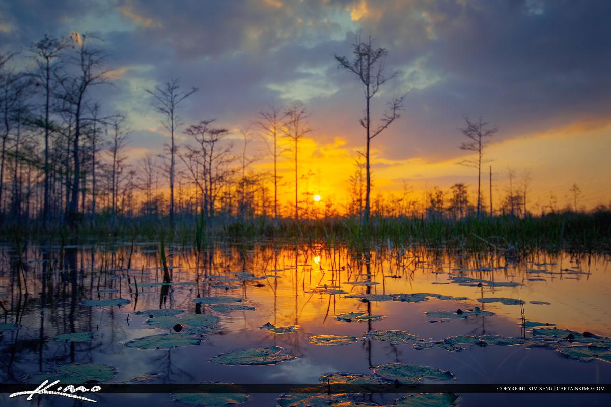 Sunset at Palm Beach Gardens Wetlands