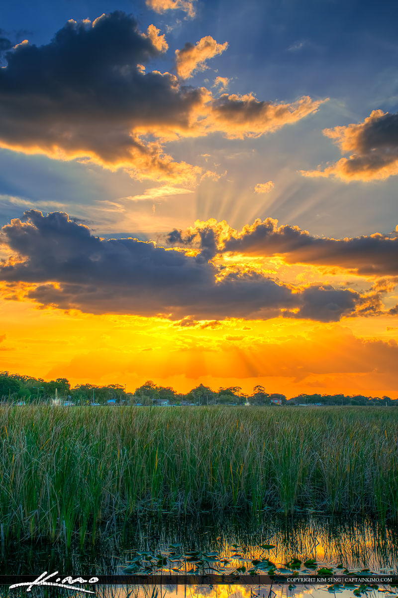 St Cloud Florida Sunset Lakefront Park Tall Grass