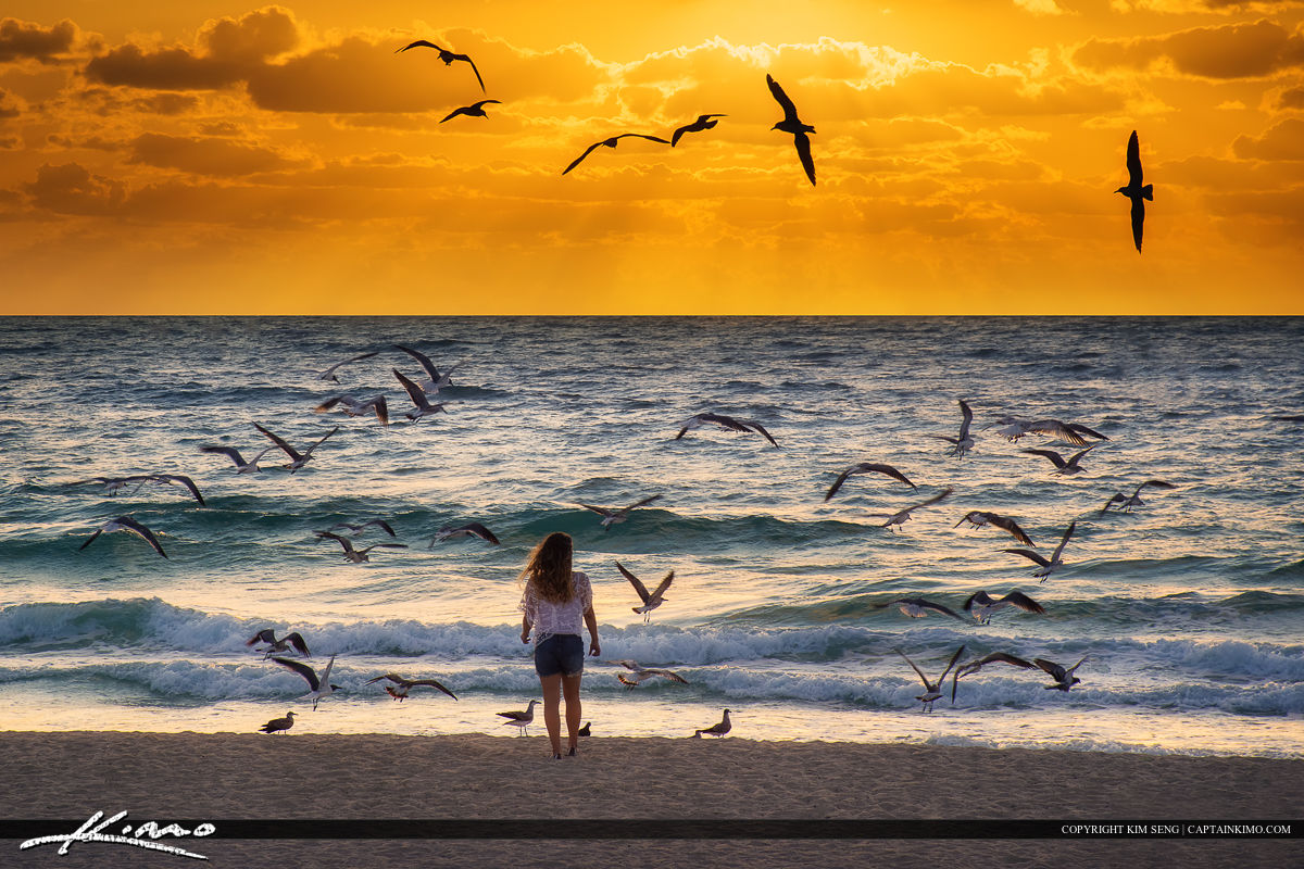 Girl with Seagulls at Beach Glorious Easter Sunrise