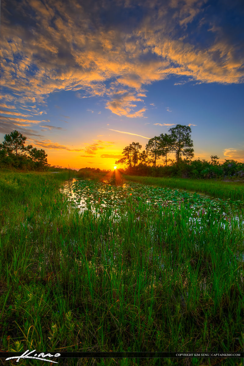 Sunset West Martin County Florida Along Canal