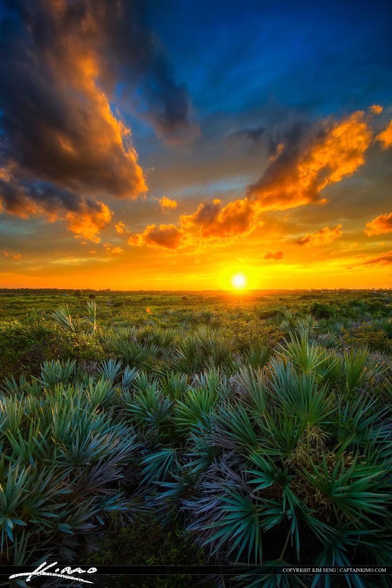 Juno Dunes Natural Area Sunset Over Florida Landscape