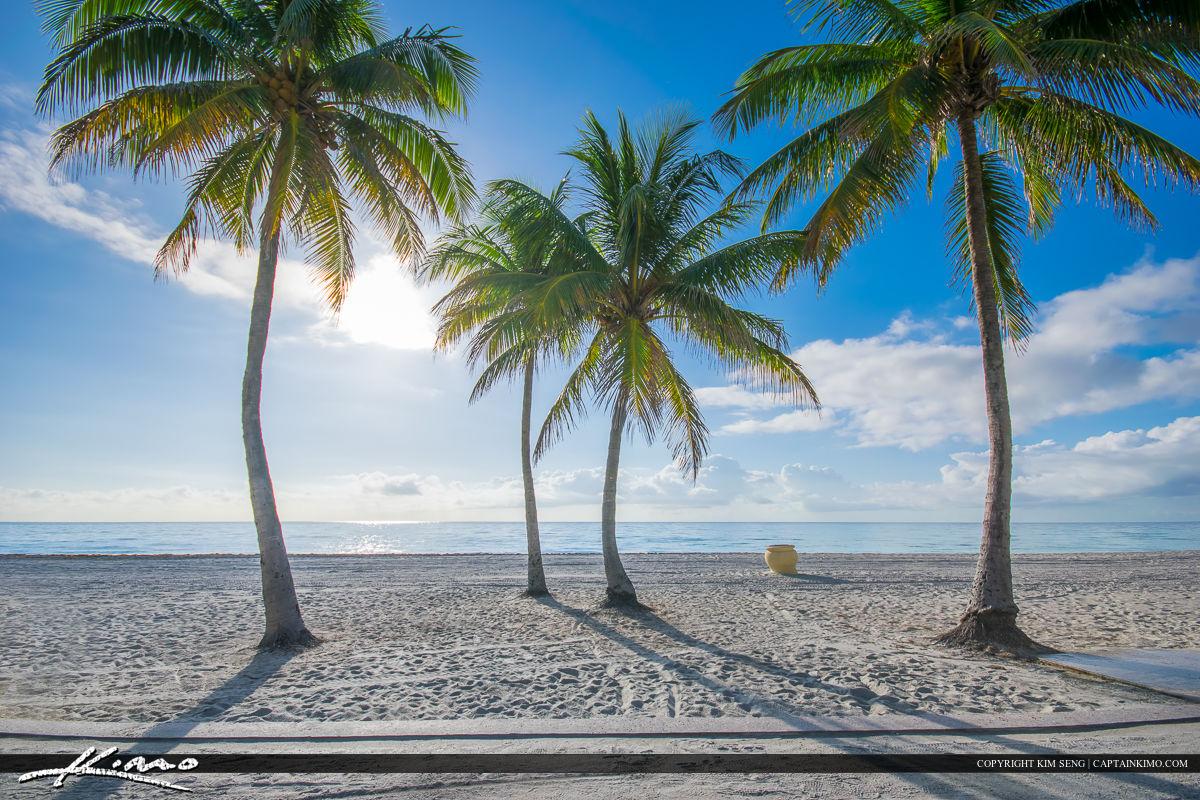 Hollywood Beach Broward County, Florida Beautiful Day