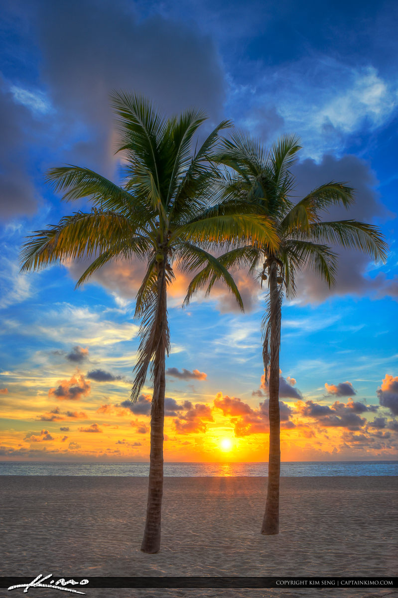 Florida Sunrise at Beach with Coconut Trees