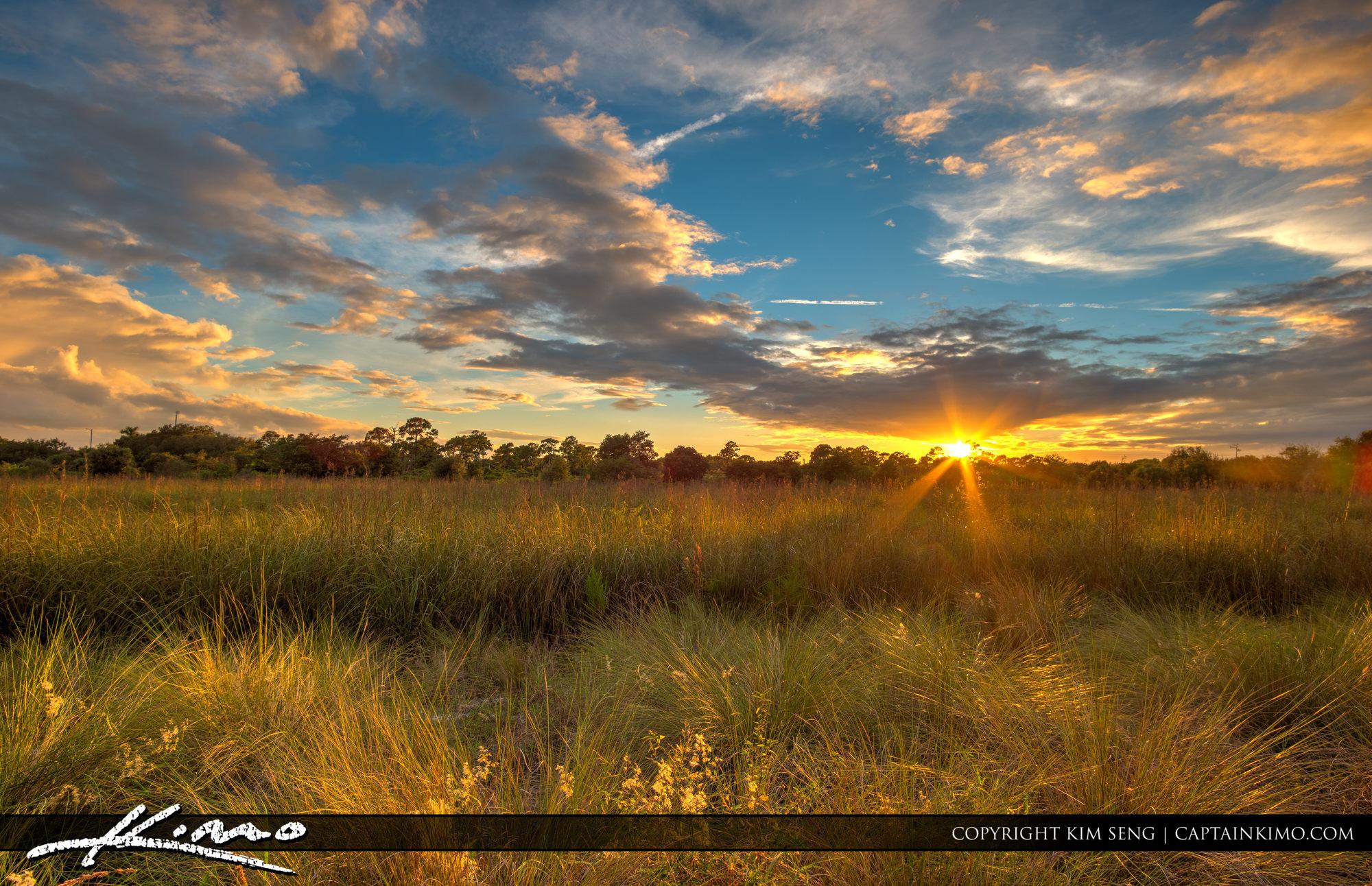 Boca Raton Pondhawk Natural Area Sunset