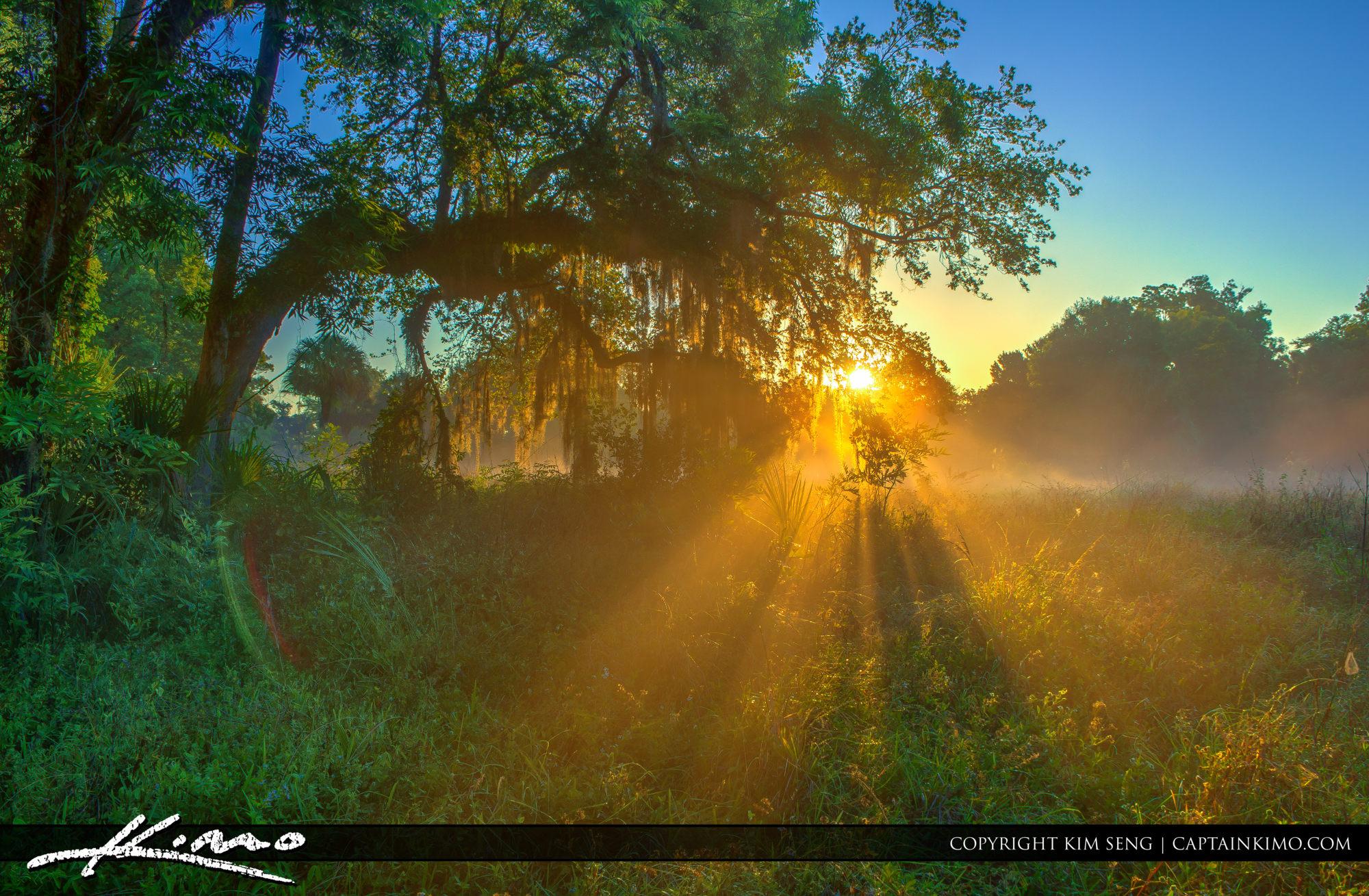 Foggy Morning at Riverbend Park Jupiter Florida