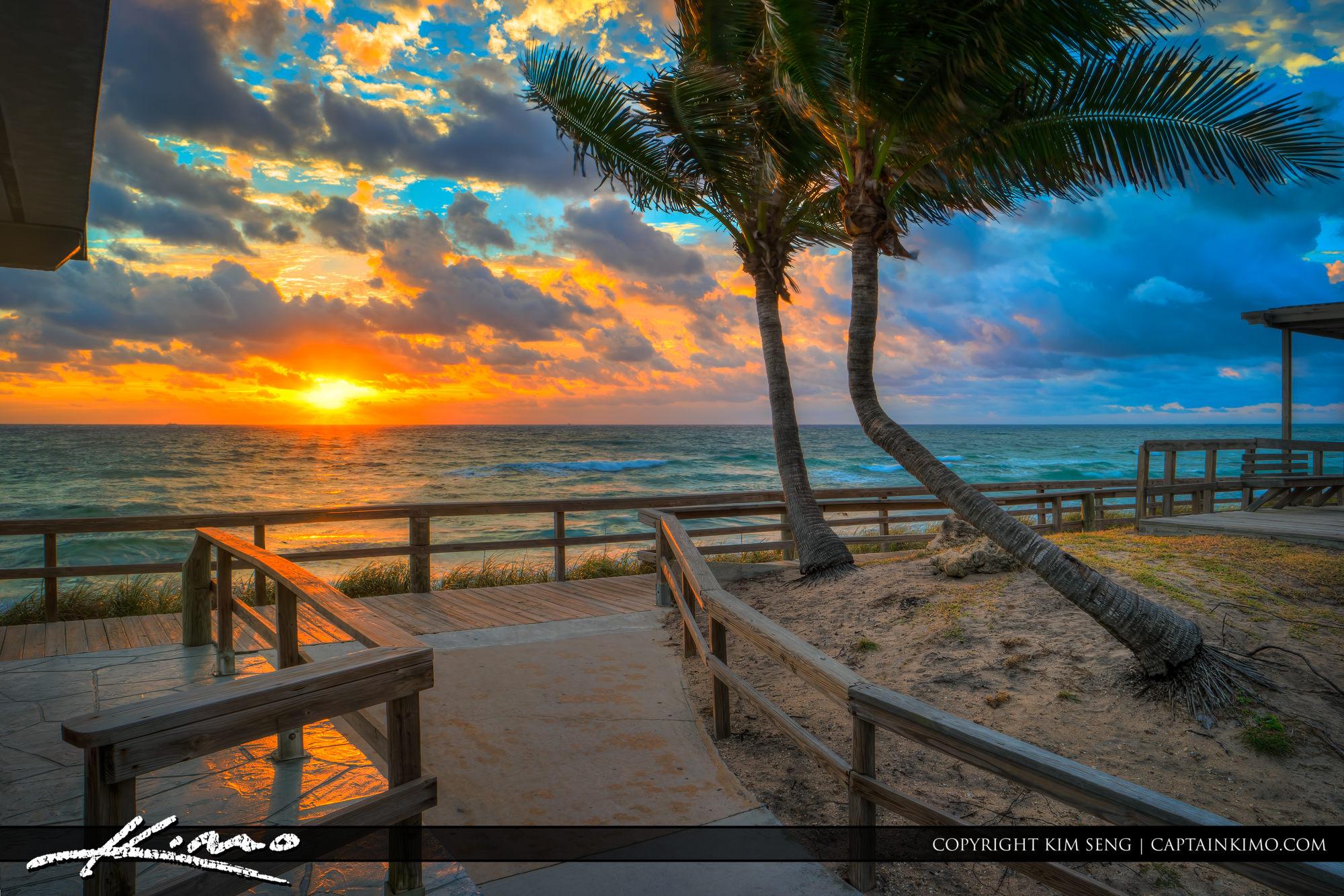 Lantana Beach Sunrise with Coconut Trees