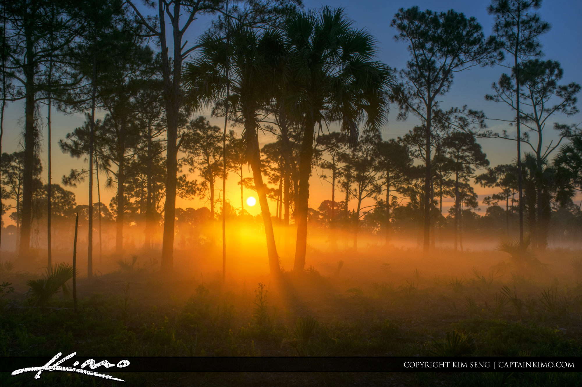 Sunrise Winding Waters Natural Area Florida Landscape