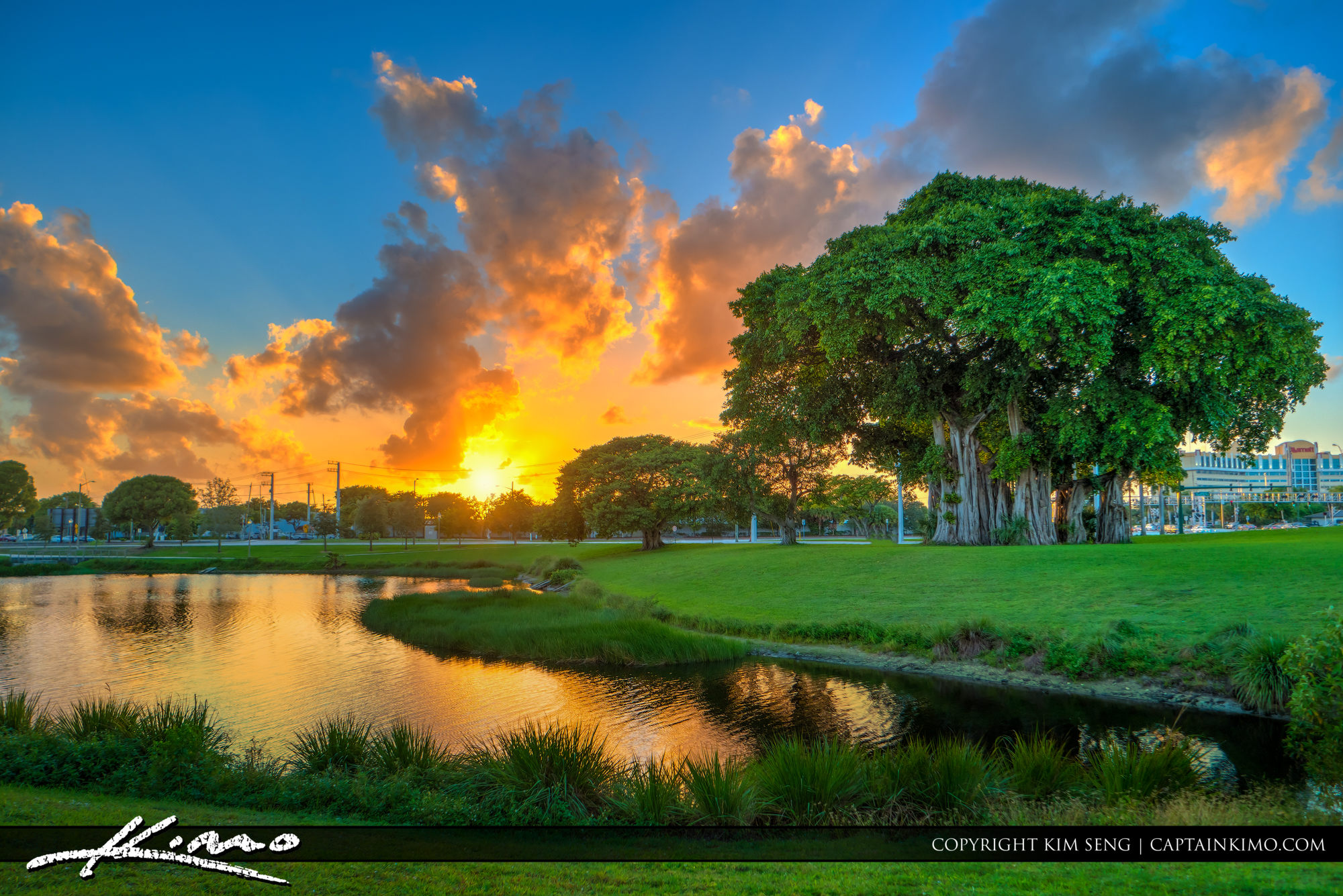 Sunset at Howard Park by Palm Beach Convention Center
