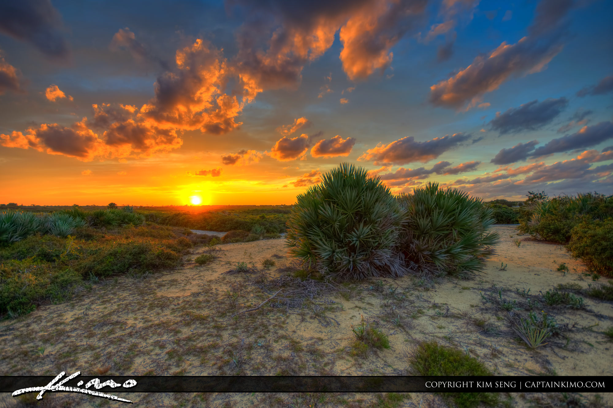Sunset Over Juno Dunes Natural Area