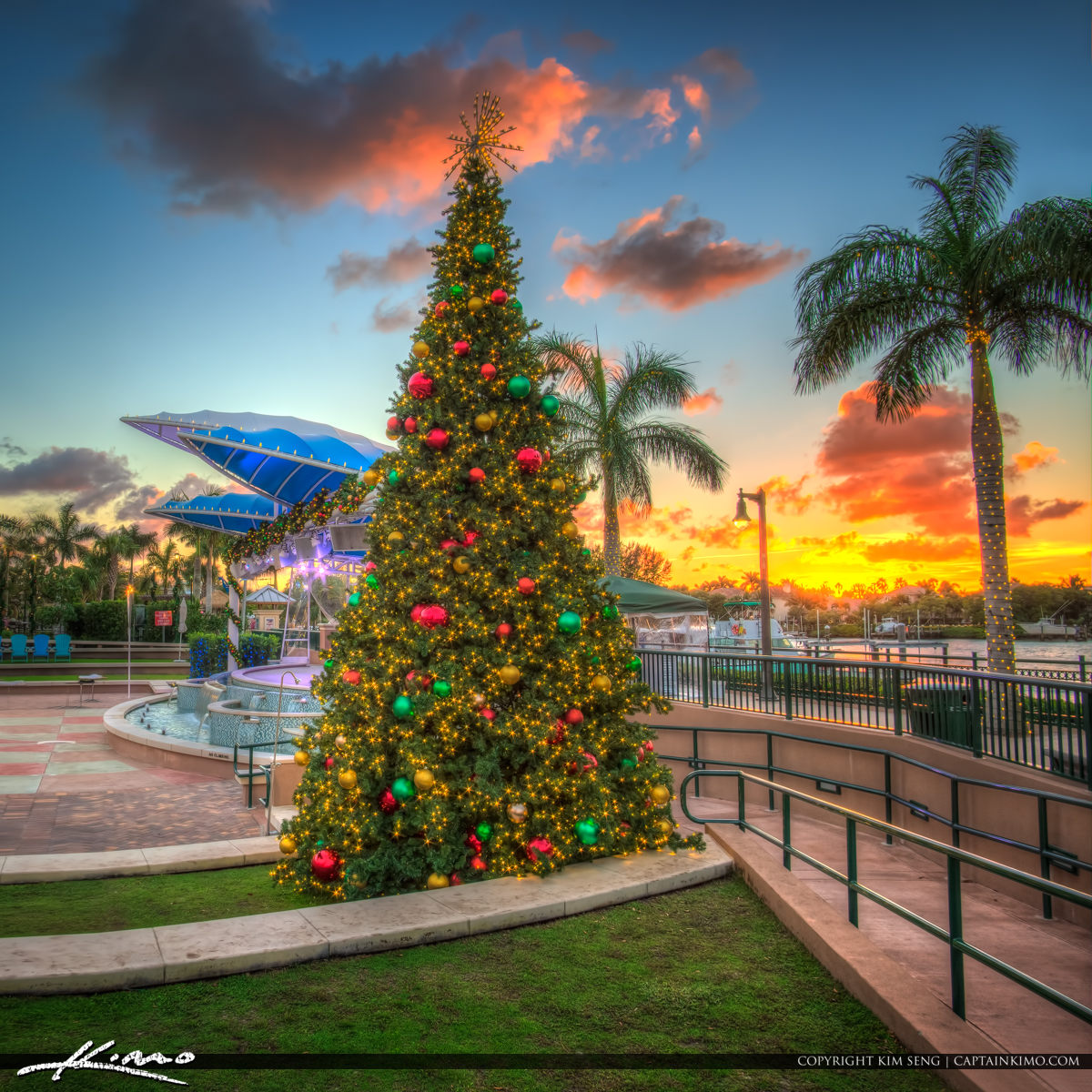 Christmas Tree Harbourside Place Sunset Jupiter Florida