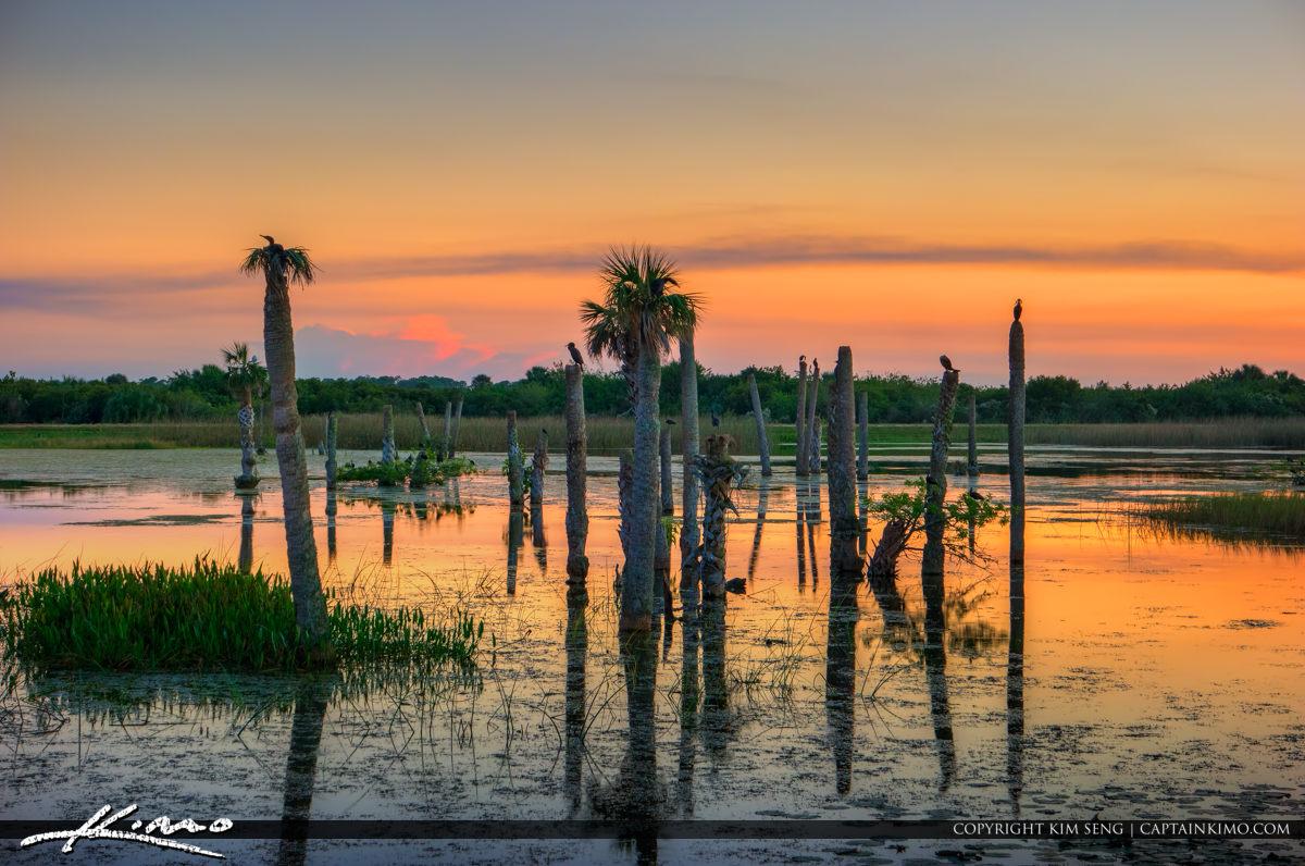 Viera Wetlands Melbourne Florida Sunset