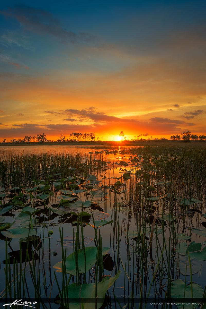 Sunset Pine Glades Wetlands Jupiter Farms Canoeing