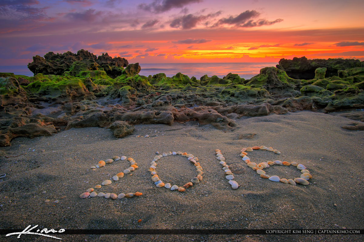 New Years Day Sunrise 2016 Coral Cove Beach