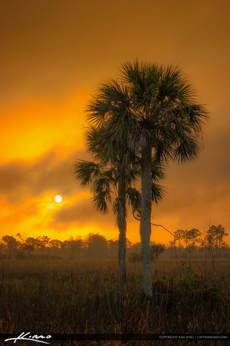 Sunrise Florida Landscape at Jupiter Farms Hazy Warm Morning
